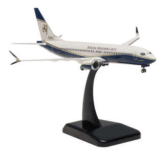 House colors - Boeing 737 MAX 8 Business Jet (Hogan 1:200)